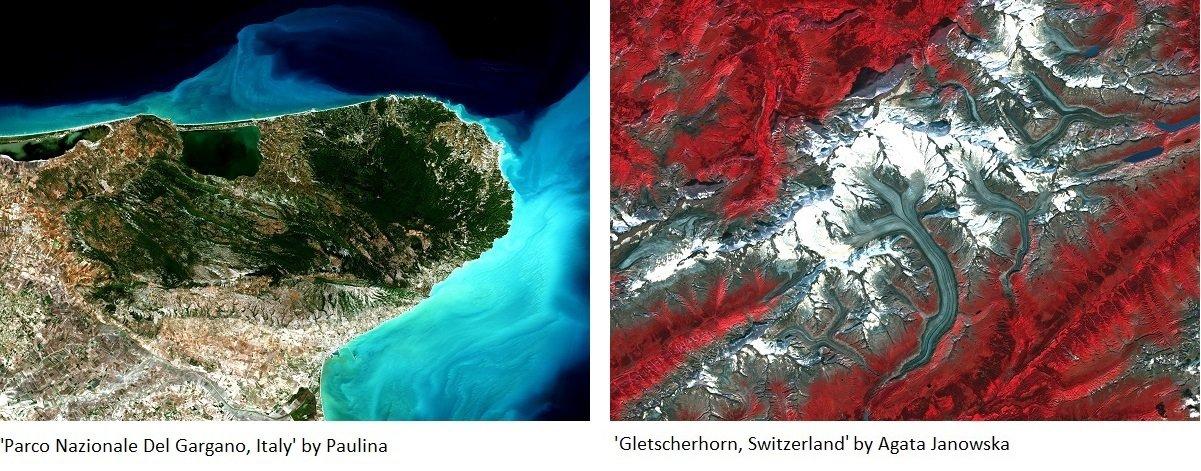 Parco Nazionale i Gletscherhorn.jpg